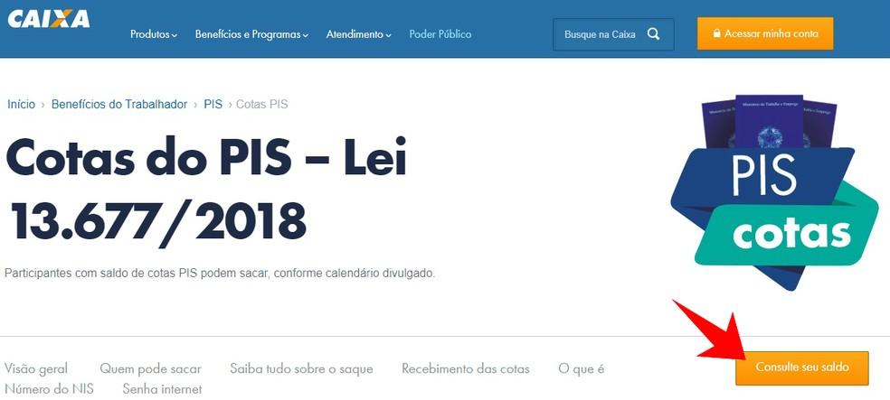 Consulta a saldo de Cotas do PIS no site da Caixa (Foto: Reprodução/Rodrigo Fernandes)