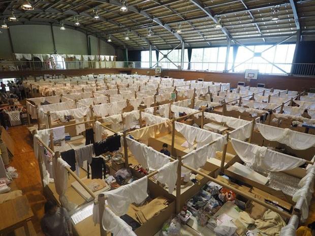 Arquiteto cria abrigos de material reciclado para vítimas de inundações no Japão (Foto: Divulgação)