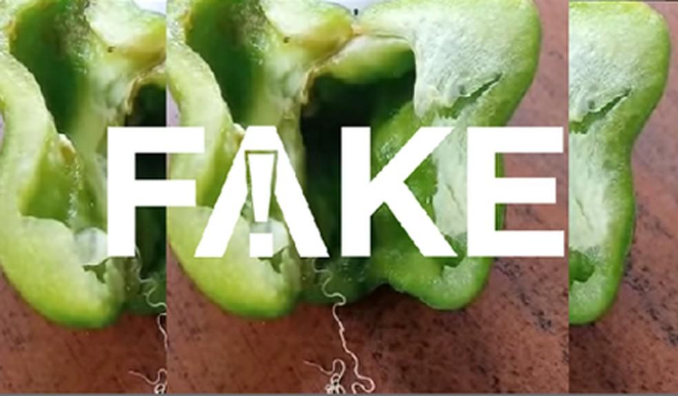 É #FAKE que pimentões estejam contaminados com verme Simla Mirch — Foto: Reprodução