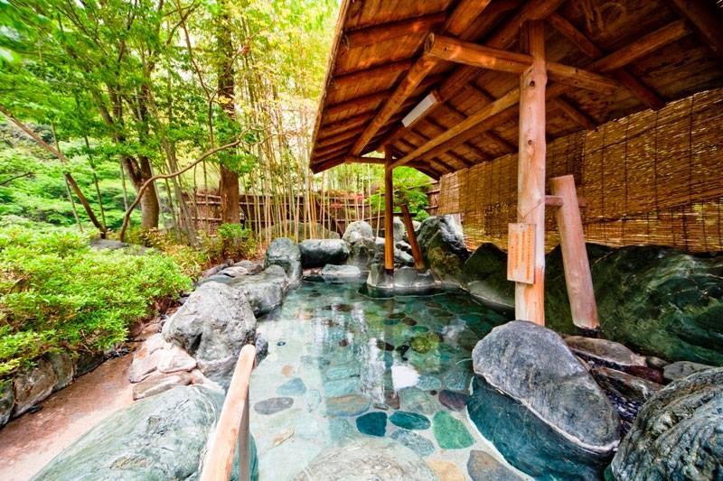 Piscina natural de águas termais (Foto: Reprodução/Facebook)