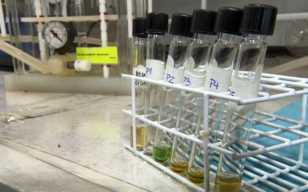 Amostras analisadas em estudo sobre a qualidade da água no Instituto de Química da Unicamp. — Foto: Reprodução/EPTV