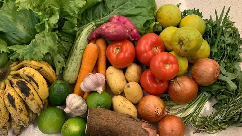 Alimentos na feira (Foto: Divulgação)