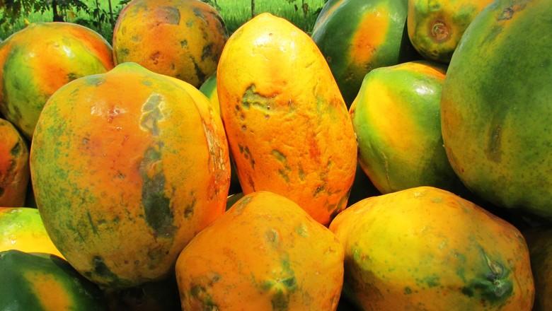 mamao-mamão-papay (Foto: Pxhere/CreativeCommons)