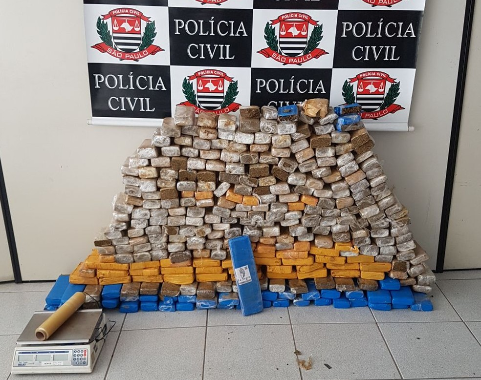 Polícia apreendeu grande quantidade de maconha na zona leste de São José (Foto: Polícia Civil/ Divulgação)