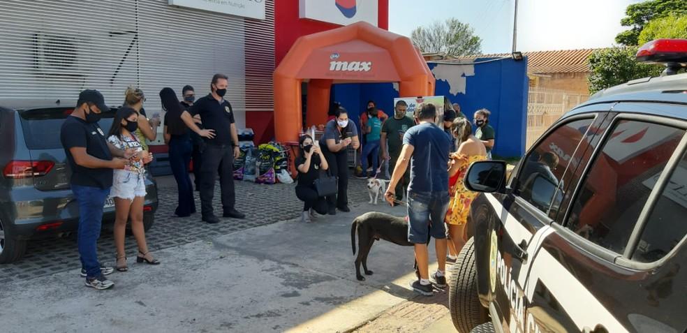 Feira de adoção de cães, parceria da Decat com a ONG Cão Feliz — Foto: Decat/Arquivo pessoal