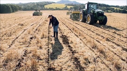 Plantio direto é um jeito mais natural de cultivar a terra