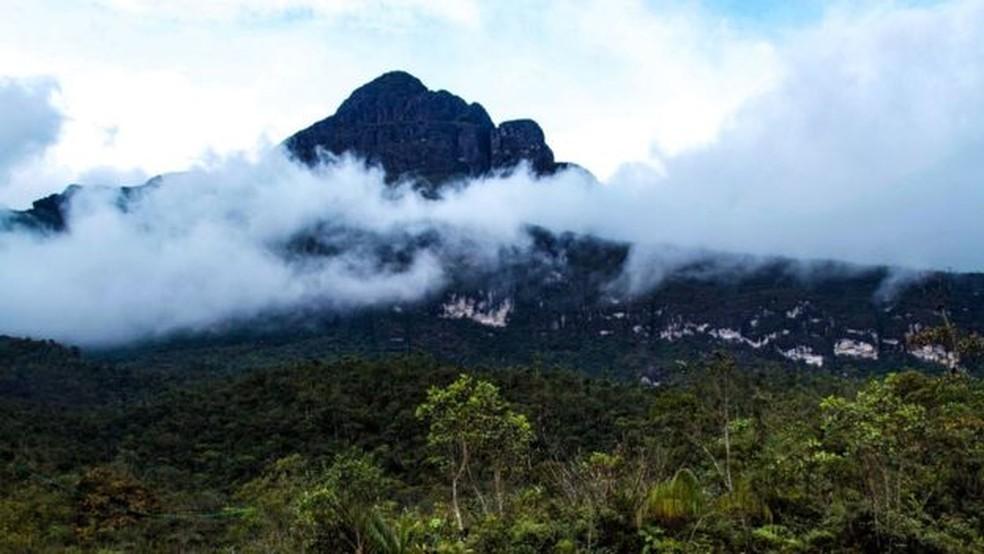 O Pico da Neblina, a 2.994 metros acima do nível do mar, visto do acampamento dos pesquisadores (Foto: BBC)