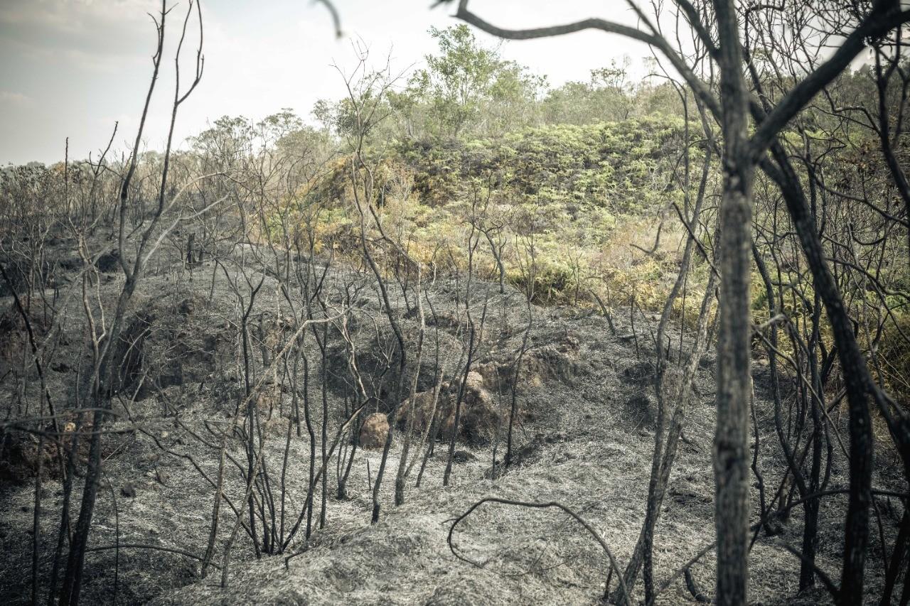 Moradores de Conceição de Ibitipoca relatam momentos de tensão com incêndio florestal