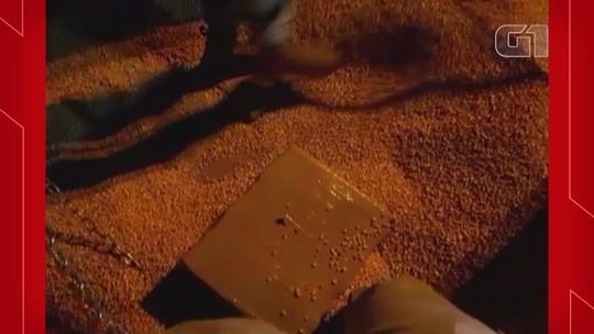 Apreendidas 2,7 toneladas de maconha em caminhão carregado com milho em Seberi