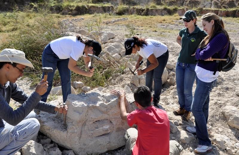 UFTM de Uberaba abre inscrições para curso prático de paleontologia e geologia em Peirópolis
