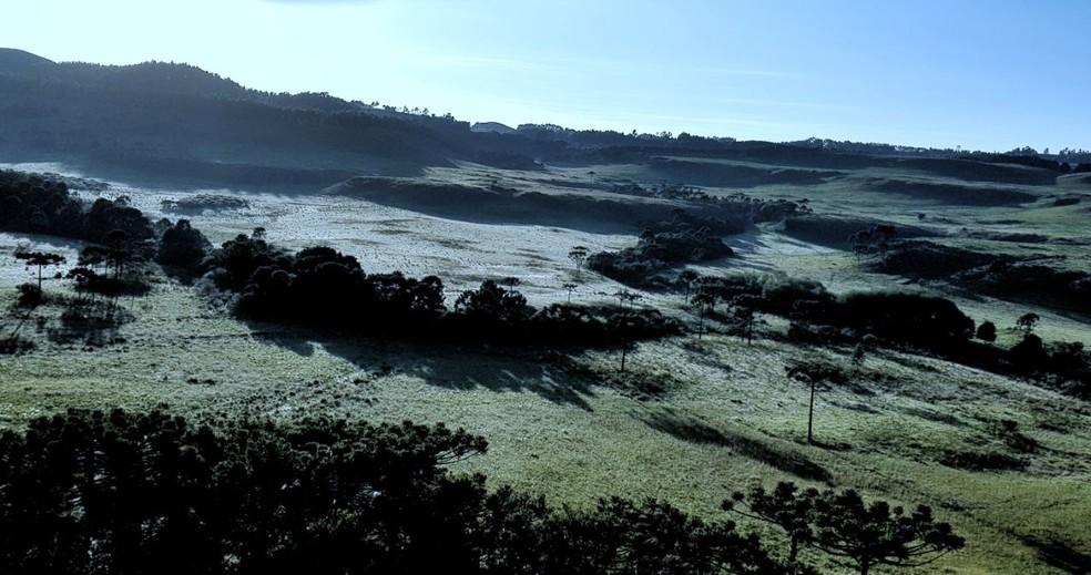 Temperaturas ficam próximas dos 4ºC no amanhecer de São Joaquim (Foto: Mycchel Hudsonn Legnaghi/São Joaquim Online)