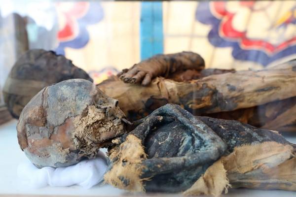 Múmias de uma mulher e um menino foram encontradas em tumba egípcia próxima à cidade de Shag (Foto: Divulgação: Ministério das Antiguidades do Egito )