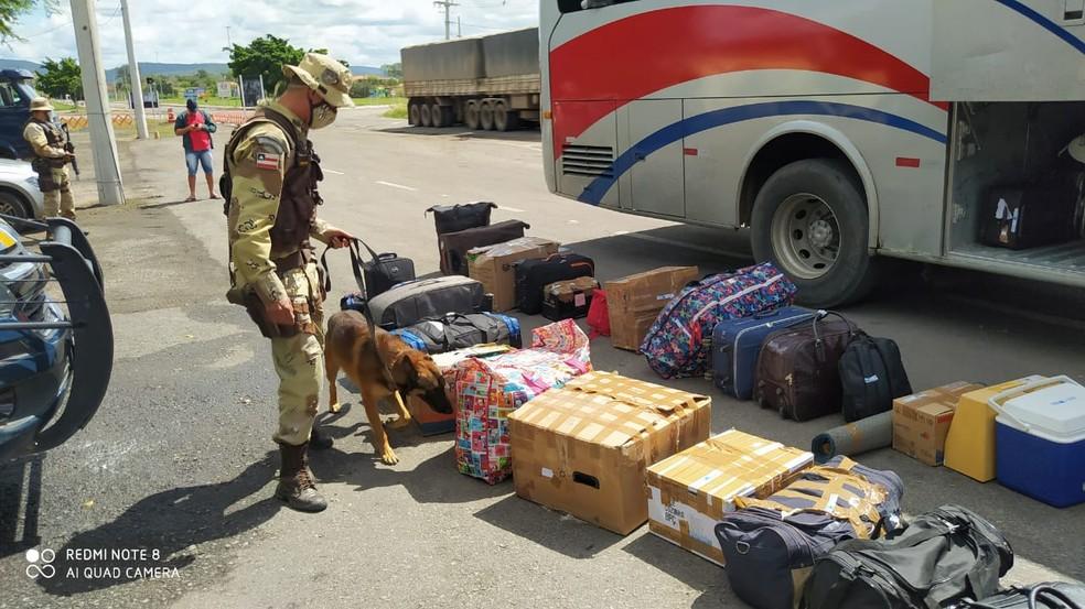 Ás do Baralho do Crime na Bahia foi preso durante fiscalização em ônibus — Foto: SSP-BA/ Divulgação