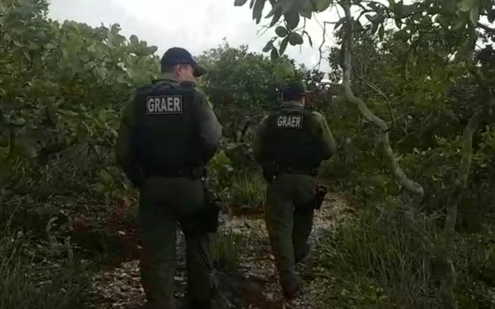 Policiais do Graer fizeram buscas em mata na Serra das Areias, onde suspeito foram mortos — Foto: Reprodução/Polícia Militar