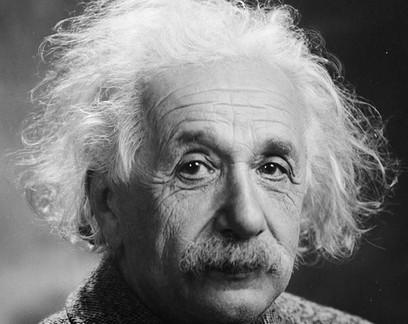 Einstein teria previsto descoberta sobre animais 70 anos antes da ciência