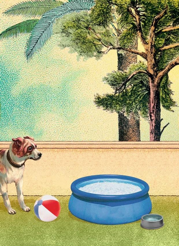 Ilustração A vida com pets, fevereiro de 2019 (Foto: Ilustração Yumi Shimada / Editora Globo)