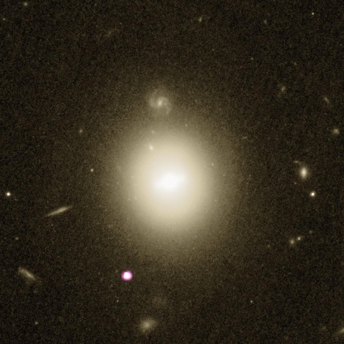 A luz branco-púrpura no canto inferior esquerdo mostra a emissão de raios X dos restos de uma estrela que foi rasgada quando caiu em direção a um buraco negro de massa intermediária. A galáxia hospedeira do buraco negro está localizada no meio da imagem. (Foto: Raio X: NASA / CXC / UNH / D.Lin e outros, ótico: NASA / ESA / STScI)