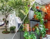 Jardins pequenos: 6 ideias para aproveitar ao máximo os espaços verdes