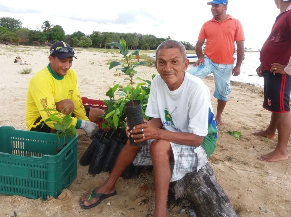 Mudas de plantas serão distribuídas em fevereiro na região do Arapiuns — Foto: Projeto Saúde e Alegria/Divulgação