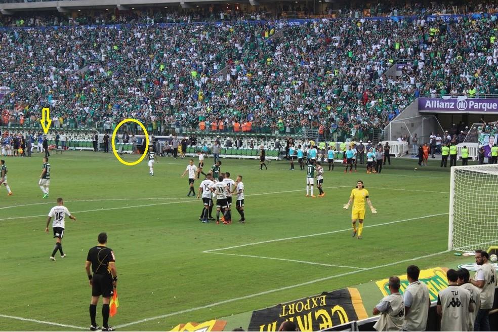 Momento em que o Palmeiras considera ter havido interferência externa (Foto: Reprodução)