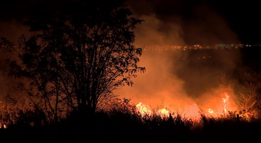 Incêndios atingem duas áreas de propriedade do Exército em Campinas