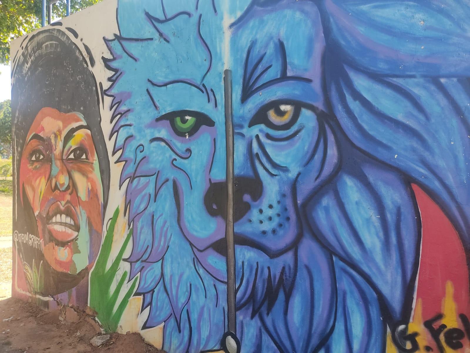 Lei reconhece práticas do grafite e muralismo como manifestações artísticas de valor cultural em Presidente Prudente