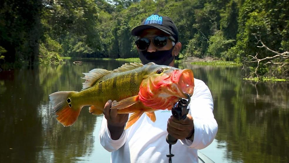 Pescaria da semana é pelo Pará. — Foto: Toni Mendes/TG