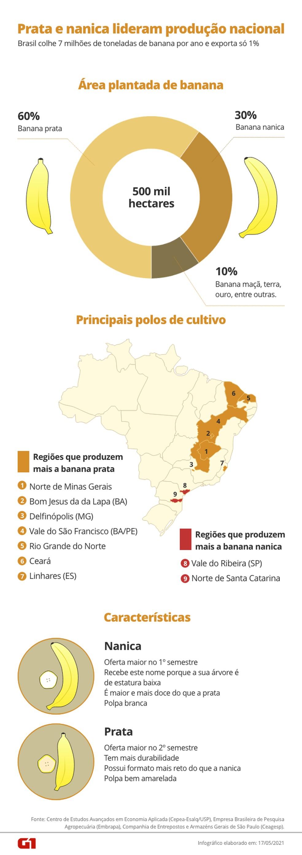 Brasil é o 4º maior produtor de banana do mundo. — Foto: Arte/G1