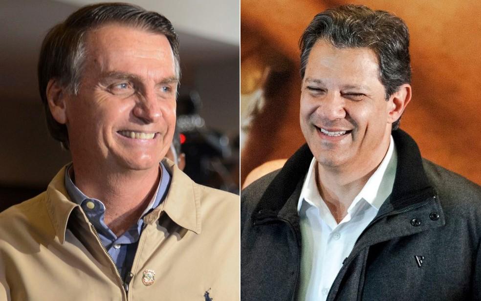 Os candidatos à Presidência pelo PSL, Jair Bolsonaro, e pelo PT, Fernando Haddad — Foto: Tânia Rêgo e Marcelo Camargo/Agência Brasil