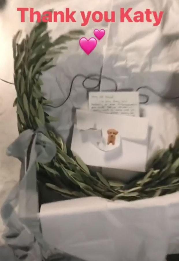 O ramo de oliveira oferecido por Katy (Foto: Reprodução Instagram)