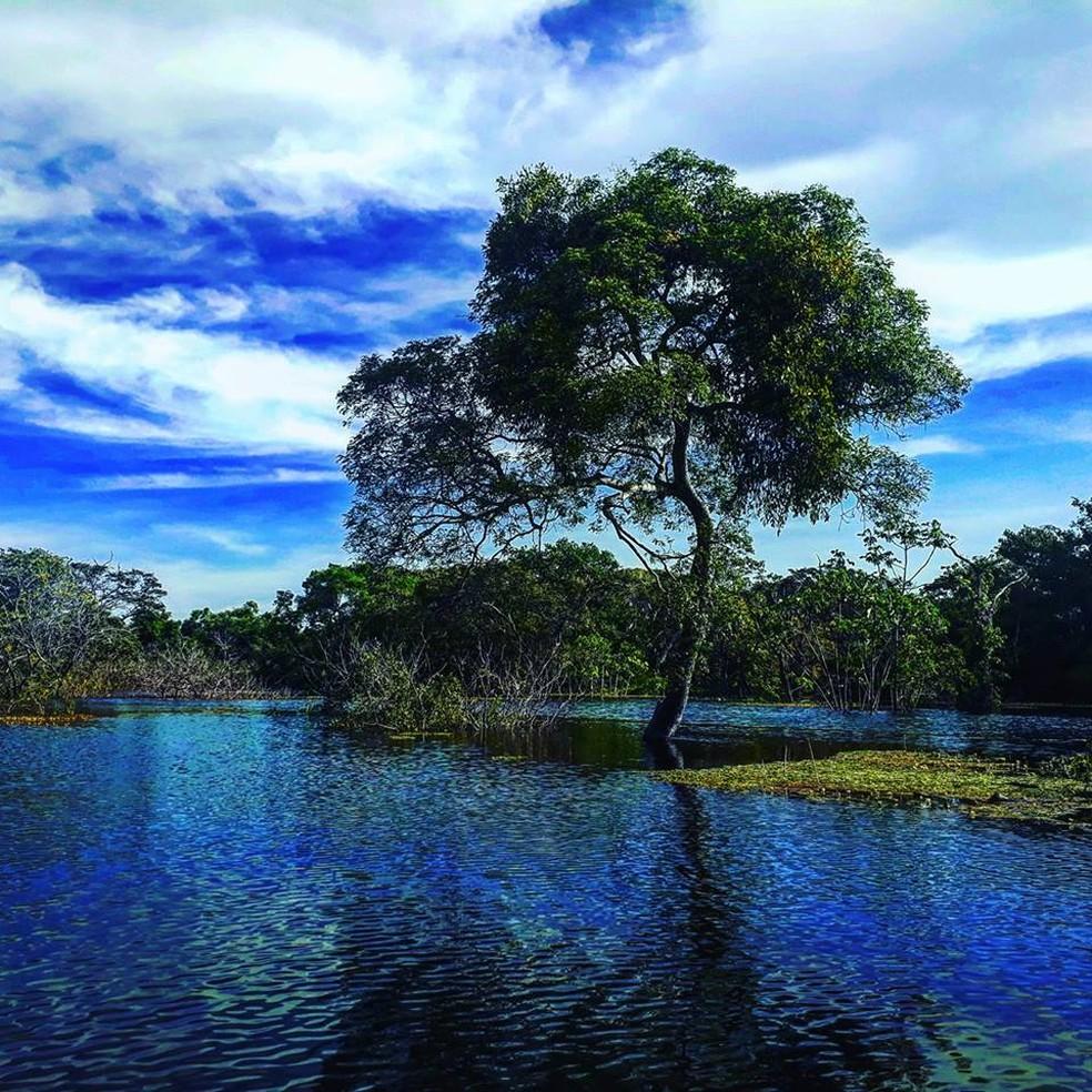 Paraíso amazônico: tesouro para as futuras gerações (Foto: Arquivo Pessoal)