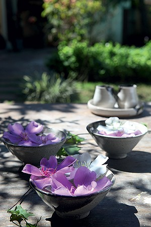 Flores Para Colorir O Jardim Casa E Jardim Flores