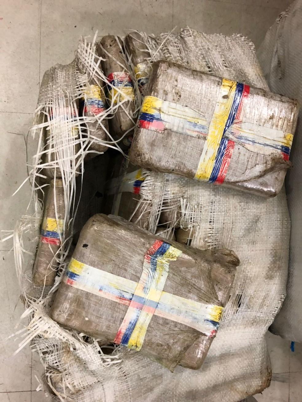 Ao todo, 260 kg de drogas foram apreendidos (Foto: Divulgação/Polícia Federal)