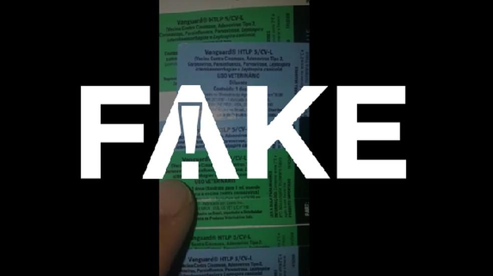 É #FAKE que vacina canina mostrada em vídeo se destine ao coronavírus humano — Foto:  G1