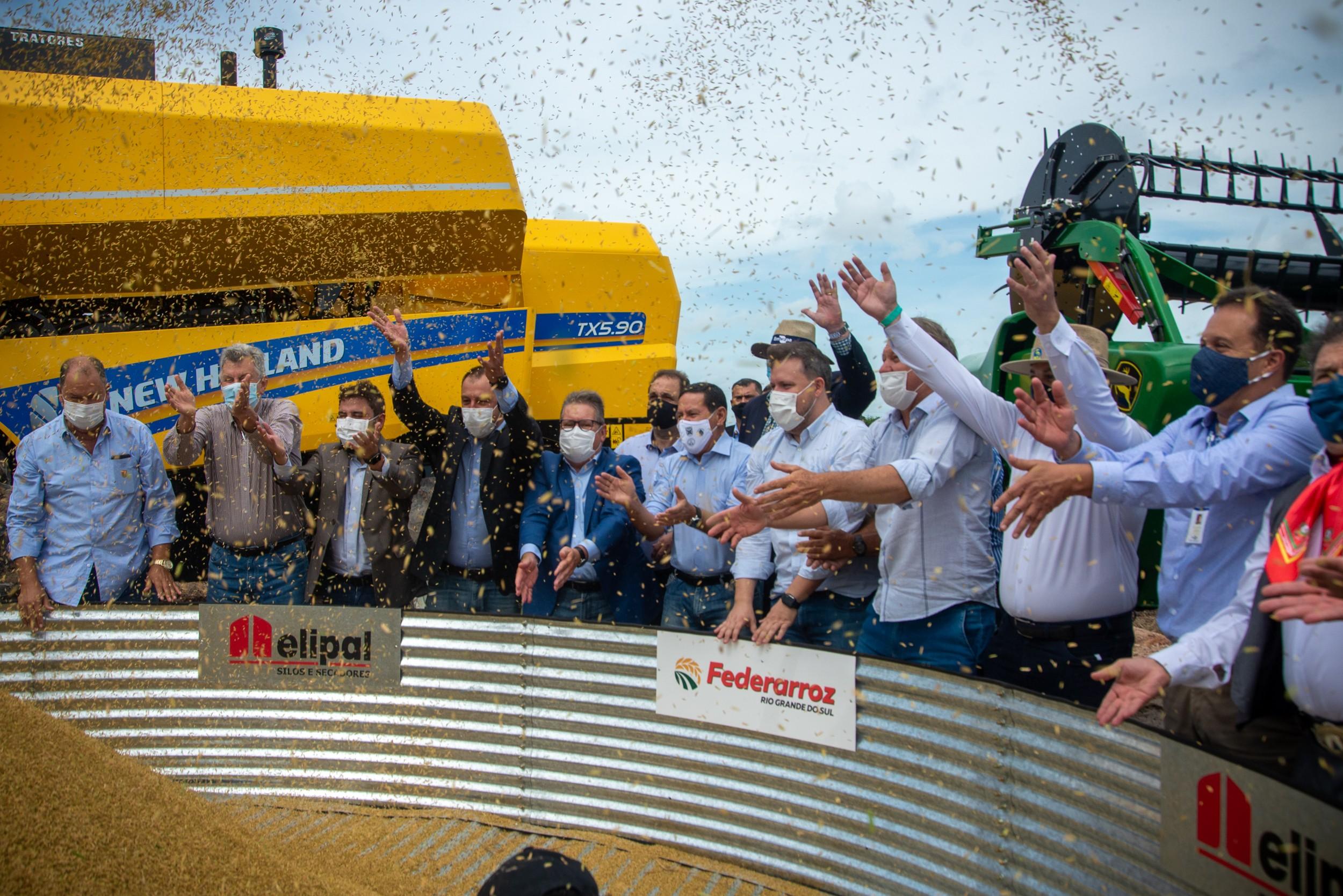 Abertura da colheita de arroz (Foto: Federarroz/Divulgação)