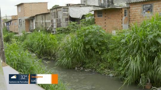 Dois milhões de pessoas não têm coleta de esgoto na Região Metropolitana de SP, diz estudo