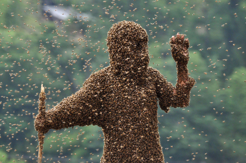Imagem meramente ilustrativa. A pessoa encoberta por abelhas na foto é profissional e sabe o que está fazendo.  (Foto: Reprodução / YouTube)
