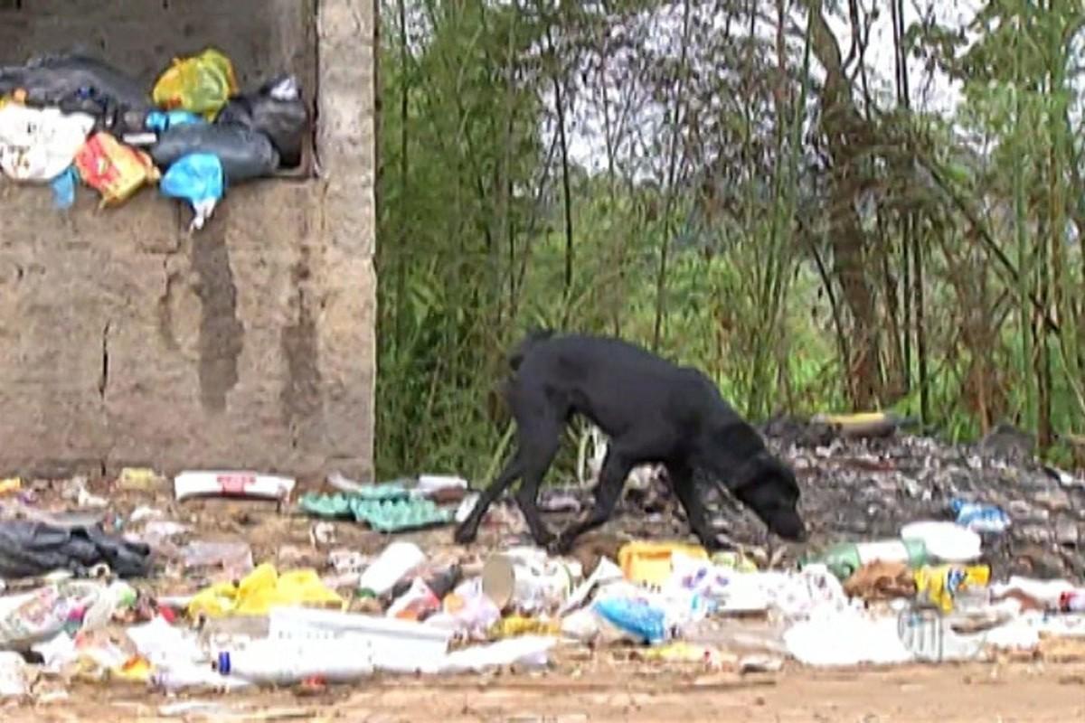 Problemas com o lixo afeta rotina de moradores de Taiaçupeba, em Mogi