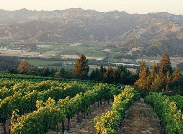 Napa Valley, Califónia, Estados Unidos (Foto: Winecountry/ Reprodução)