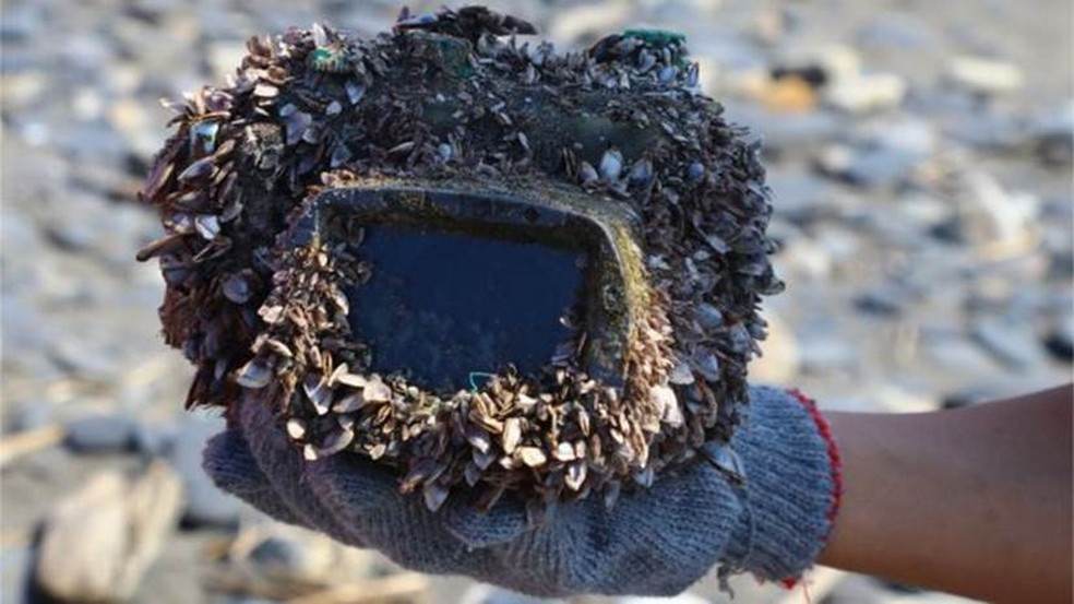 Uma pedra? Não, uma câmera encontrada após dois anos perdida no fundo do mar (Foto: Arquivo pessoal/Park Lee)