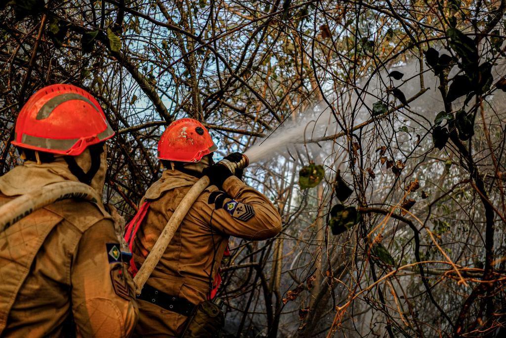 MT receberá 43 militares da Força Nacional para combate aos incêndios florestais