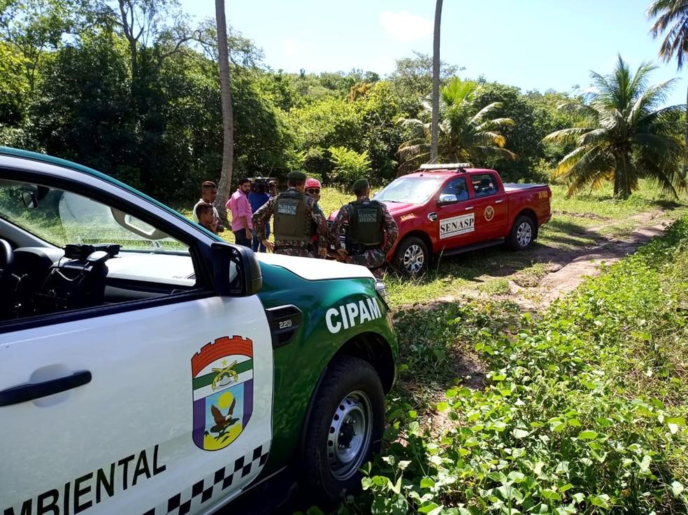 Equipes da PM, Corpo do Bombeiros e FAB participaram das buscas pelo ultraleve desaparecido — Foto: PMRN/Divulgação