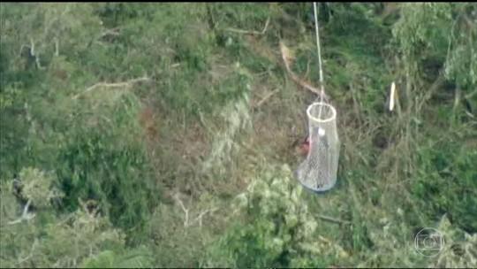 Turistas são resgatados após balão fazer pouso de emergência em mata na Serra da Mantiqueira