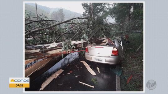 Árvore cai em cima de dois carros e deixa feridos na BR-354 em Pouso Alto