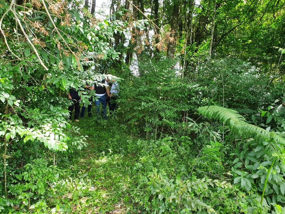 Corpo da jovem foi encontrado em uma chácara, em São José dos Pinhais — Foto: Vanessa Rumor/RPC