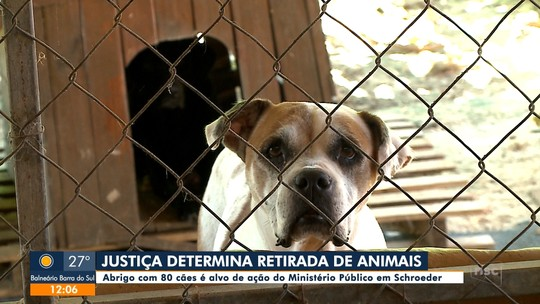Justiça determina retirada de animais em abrigo de Schroeder