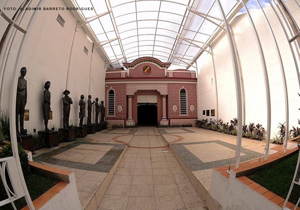 Vereador apresenta requerimento solicitando construção de estátuas de cachorro e gato na entrada da Câmara de Caruaru