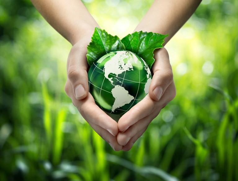 Títulos verdes (Foto: Reprodução)