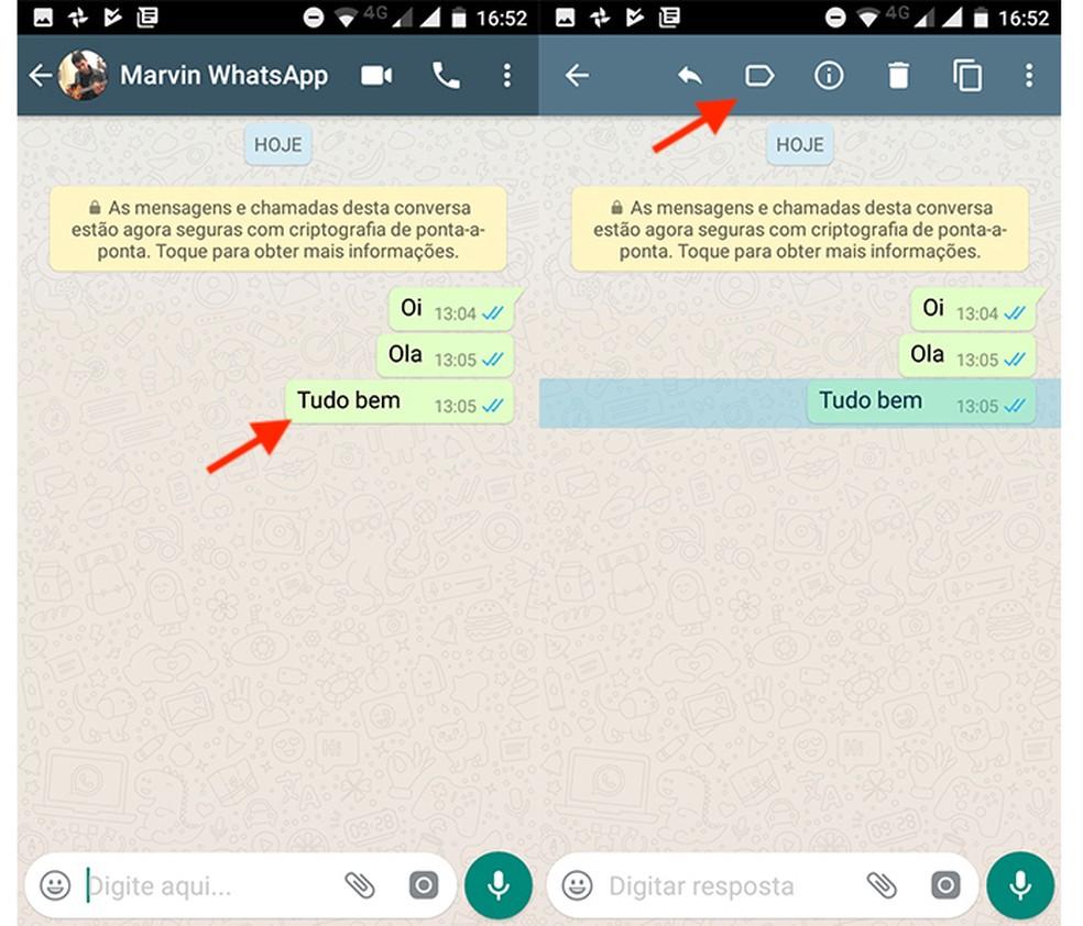 Opções para uma mensagem no WhatsApp Business