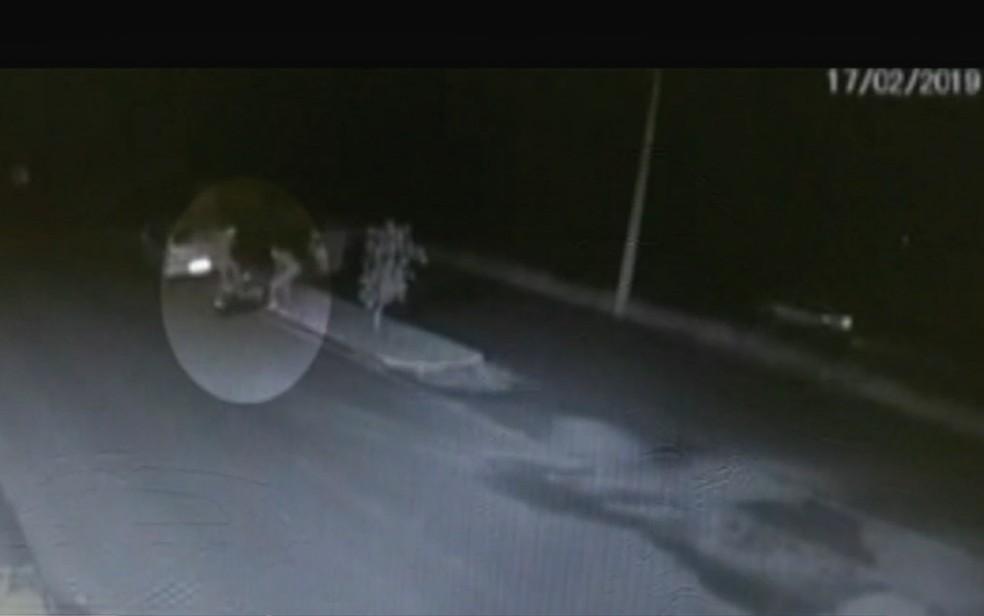 Vídeo registra quando dois homens batem em Jhonny Max da Silva Tomasczeski em Jataí, Goiás — Foto: Divulgação/ Polícia Civil